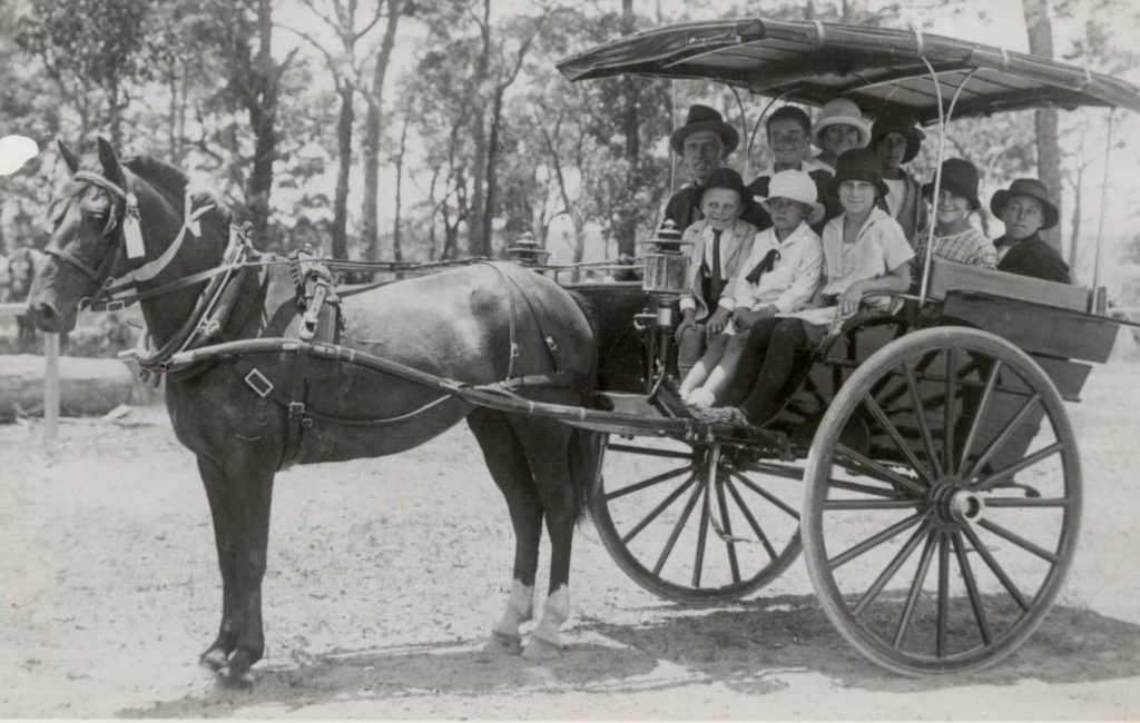 Horse and cart transport, St Ives, c1900
